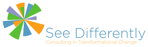 See Differently Consulting In Transformational Change
